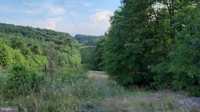 Brush Leaf Lane - Lot 9, MOUNT JACKSON, VA 22842 (#VASH121548) :: AJ Team Realty