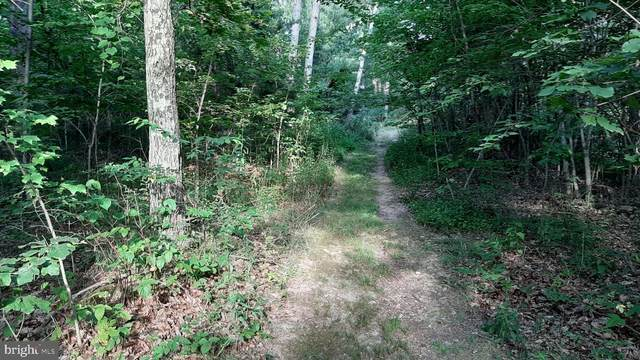 Brush Leaf Lane - Lots 8 & 9, MOUNT JACKSON, VA 22842 (#VASH121550) :: AJ Team Realty