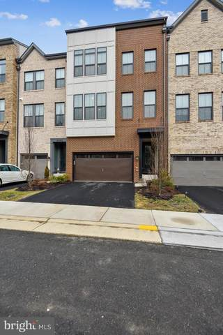 42362 Piper Creek Terrace, ASHBURN, VA 20148 (#VALO431356) :: Colgan Real Estate