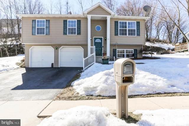 49 Sweet Arrow Drive, HUMMELSTOWN, PA 17036 (#PADA130460) :: John Smith Real Estate Group