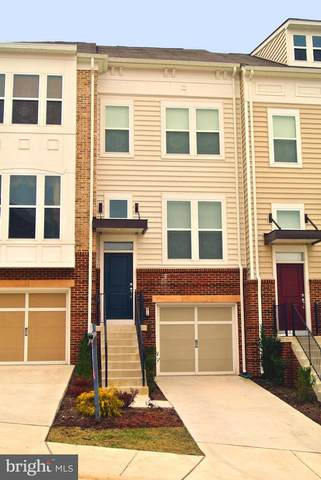 42663 Redeemer Terrace, ASHBURN, VA 20148 (#VALO431430) :: Colgan Real Estate