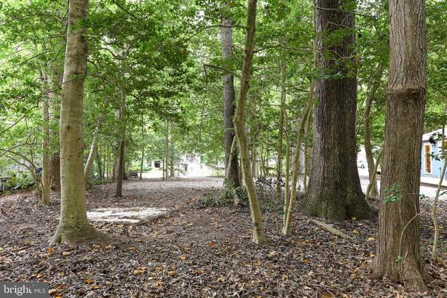 Lot 6 Holly Court Holly Court, LEWES, DE 19958 (#DESU178034) :: Sail Lake Realty