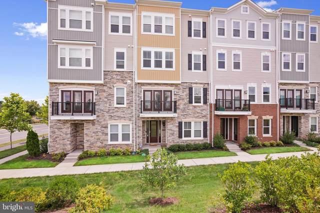 24517 Glenville Grove Terrace, ALDIE, VA 20105 (#VALO431460) :: Bob Lucido Team of Keller Williams Integrity