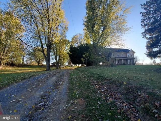 3684 Shepherdstown Road, MARTINSBURG, WV 25404 (#WVBE183894) :: Bob Lucido Team of Keller Williams Integrity