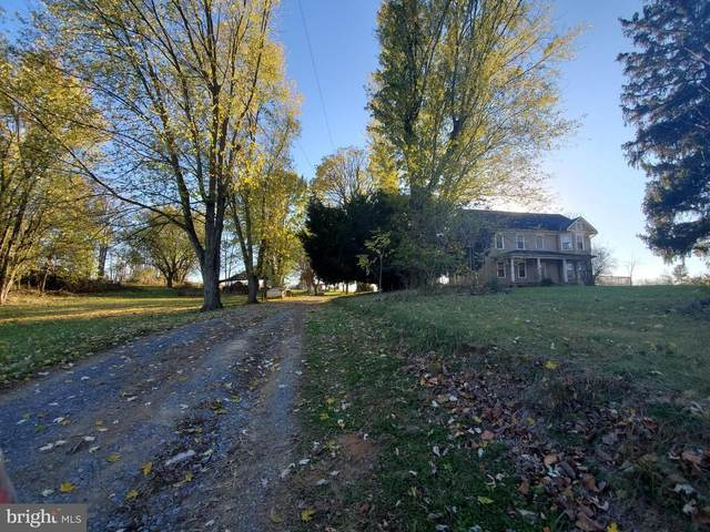 3684 Shepherdstown Road, MARTINSBURG, WV 25404 (#WVBE183894) :: Boyle & Kahoe Real Estate