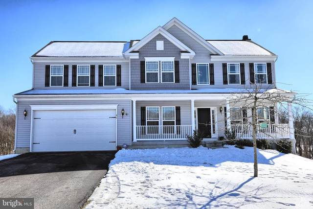 91 Stanfield Drive, ELKTON, MD 21921 (#MDCC173440) :: AJ Team Realty