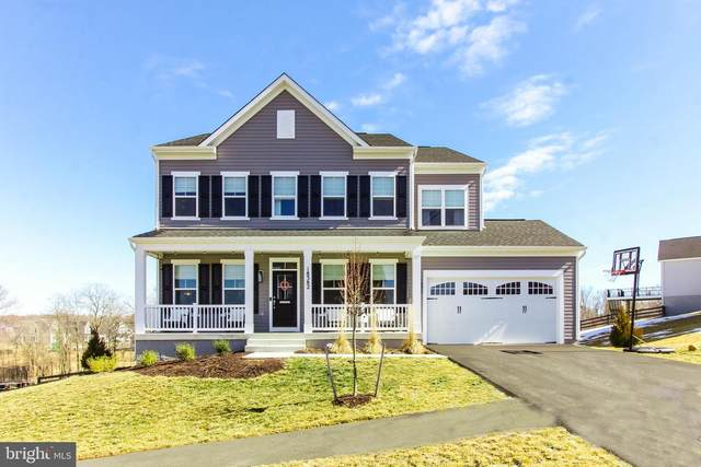 18382 Grassyview Place, ROUND HILL, VA 20141 (#VALO431480) :: AJ Team Realty