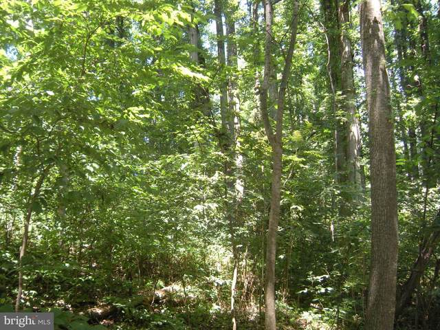 LOT #208 Anne Glass Road, WINCHESTER, VA 22602 (#VAFV162314) :: McClain-Williamson Realty, LLC.