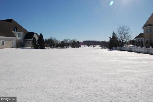 668 Goose Neck Drive, LITITZ, PA 17543 (#PALA177762) :: The Craig Hartranft Team, Berkshire Hathaway Homesale Realty