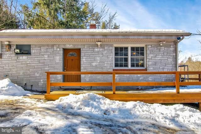 9 Board Run Road, NEWPORT, PA 17074 (#PAPY103106) :: The Joy Daniels Real Estate Group