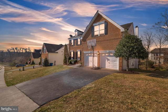 341 Canyon Road, WINCHESTER, VA 22602 (#VAFV162336) :: Realty One Group Performance