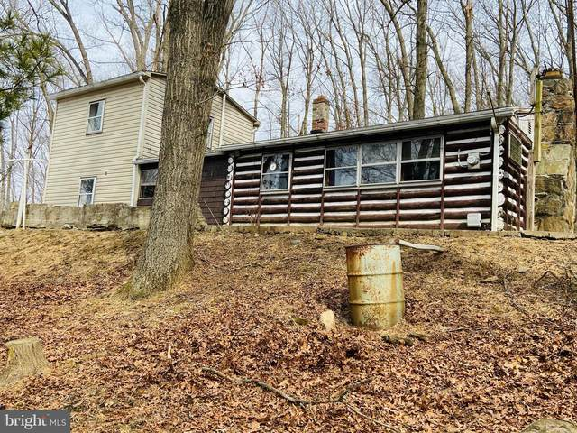 7032 Woodbine Road, AIRVILLE, PA 17302 (#PAYK153480) :: The Joy Daniels Real Estate Group