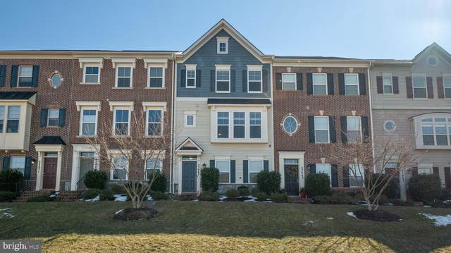 22667 Majestic Elm Court, CLARKSBURG, MD 20871 (MLS #MDMC745872) :: Maryland Shore Living | Benson & Mangold Real Estate