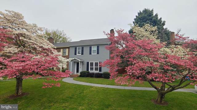 1020 Orchard Hill Drive, WINCHESTER, VA 22601 (#VAWI115802) :: The Riffle Group of Keller Williams Select Realtors
