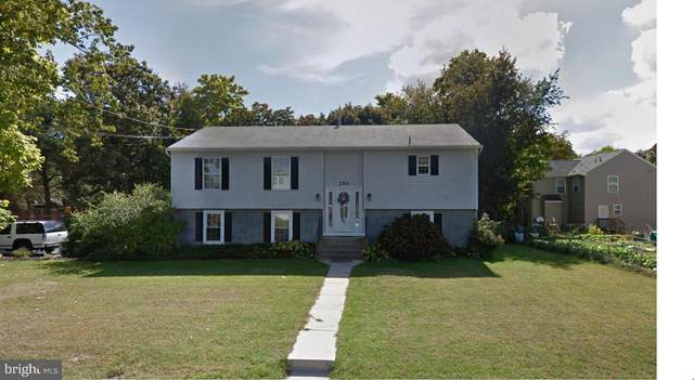 250 Division Street, WEST BERLIN, NJ 08091 (#NJCD413984) :: Crossroad Group of Long & Foster