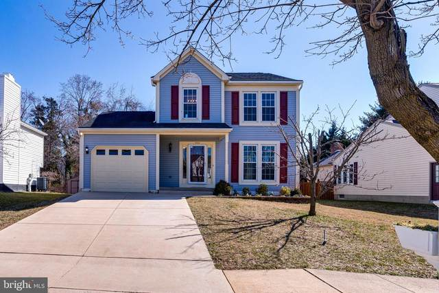 824 Sunnyfield Lane, BALTIMORE, MD 21225 (#MDAA460294) :: Ultimate Selling Team