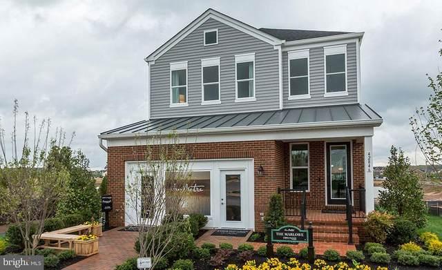 42797 Littlehales Terrace, ASHBURN, VA 20148 (#VALO431698) :: Dart Homes