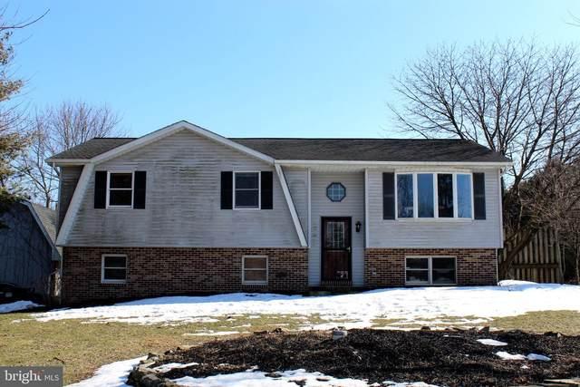 13 Sunset Drive, BERNVILLE, PA 19506 (MLS #PABK373904) :: Kiliszek Real Estate Experts