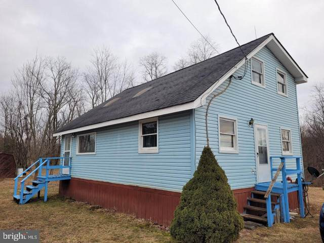 155 Glow Haven Rd, ROMNEY, WV 26757 (#WVHS115310) :: SURE Sales Group