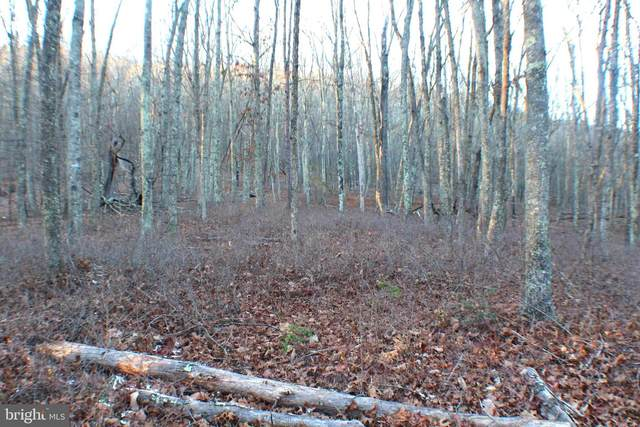 Lot 37 Spring Mountain Property, PETERSBURG, WV 26847 (#WVGT103414) :: AJ Team Realty