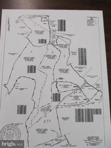Bible Hill Lane, OLDTOWN, MD 21555 (#MDAL136294) :: Bob Lucido Team of Keller Williams Integrity