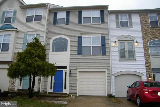 42965 Beachall Street, CHANTILLY, VA 20152 (#VALO431764) :: Colgan Real Estate