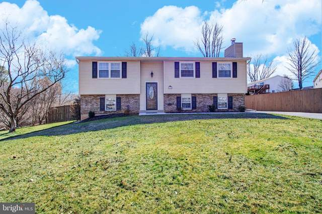 11924 Raven Rock Terrace, GAITHERSBURG, MD 20878 (#MDMC746102) :: Dart Homes