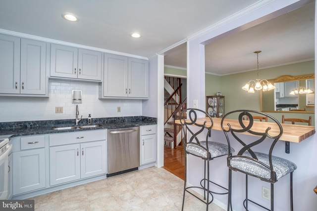1723 Carriage Way, FREDERICK, MD 21702 (#MDFR278390) :: The Vashist Group