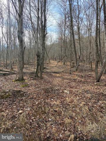 Lot 184 Sunrise Hill, FORT VALLEY, VA 22652 (#VASH121600) :: The Mike Coleman Team