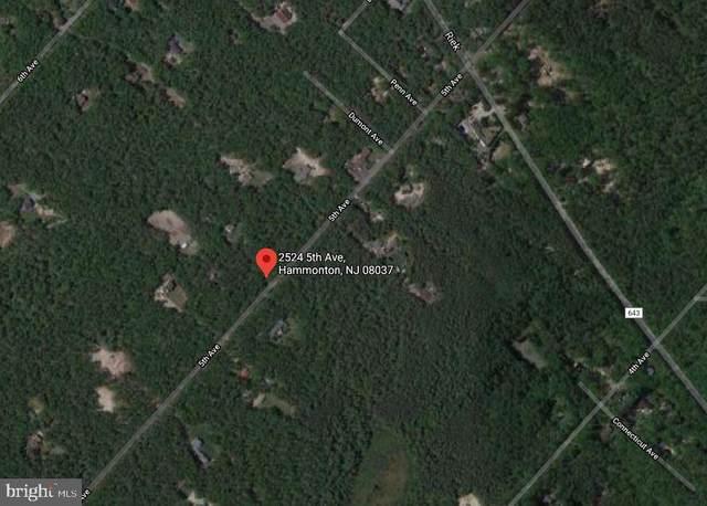2524 5TH Avenue, HAMMONTON, NJ 08037 (MLS #NJAC116548) :: The Sikora Group