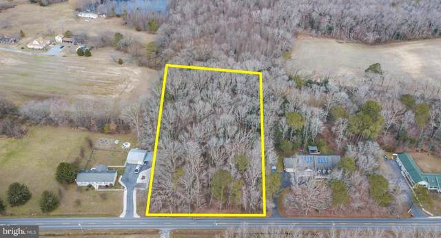 Lot 1 West Line Rd Lot 1, SELBYVILLE, DE 19975 (#DESU178342) :: Shamrock Realty Group, Inc