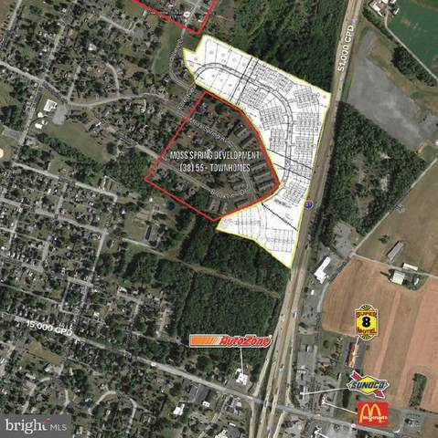 Moss Spring Avenue, GREENCASTLE, PA 17225 (#PAFL178280) :: AJ Team Realty