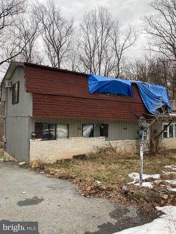 149 Big Red Oak Rd, HARPERS FERRY, WV 25425 (#WVJF141576) :: The Matt Lenza Real Estate Team