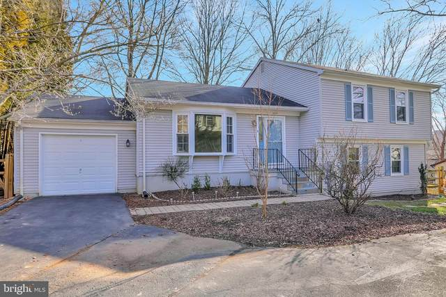 13508 Wisteria Drive, GERMANTOWN, MD 20874 (#MDMC746262) :: Gail Nyman Group
