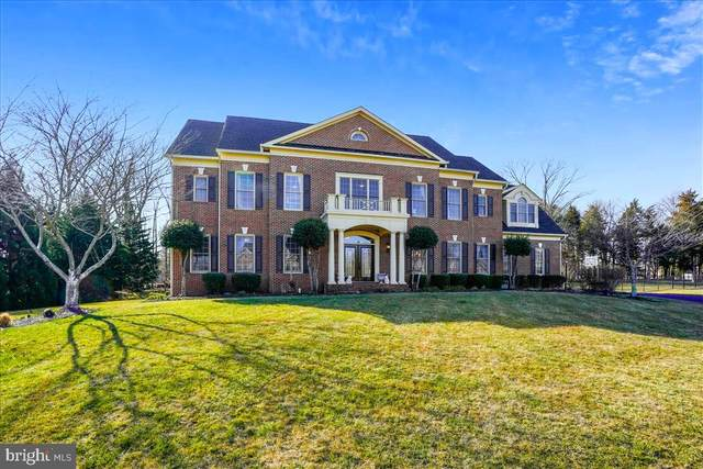 14540 Chamberry Circle, HAYMARKET, VA 20169 (#VAPW515948) :: Realty One Group Performance
