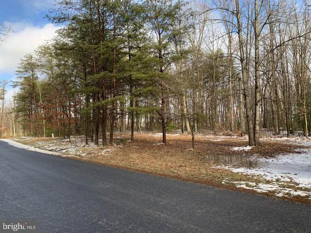 Shirley Road, UNIONVILLE, VA 22567 (#VAOR138548) :: The Licata Group/Keller Williams Realty