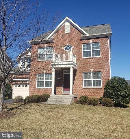 41880 Redgate Way, ASHBURN, VA 20148 (#VALO431998) :: Yesford & Associates