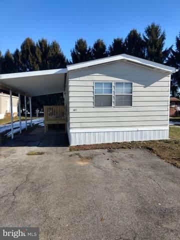 41 Hinden Homes, DENVER, PA 17517 (#PALA178054) :: The Joy Daniels Real Estate Group