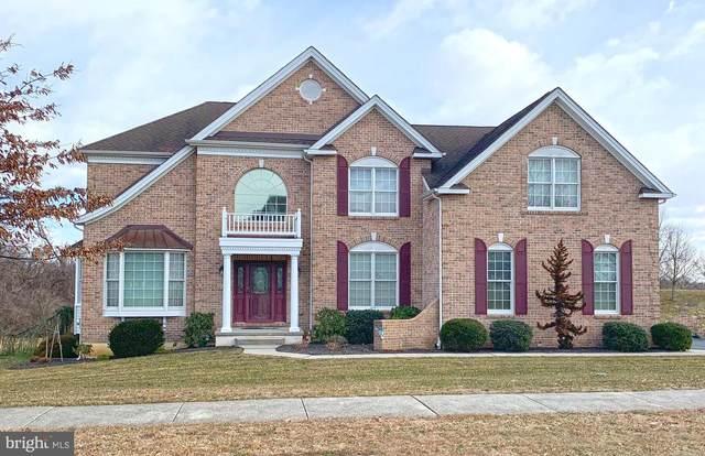717 Parkman Drive, BEAR, DE 19701 (MLS #DENC521722) :: Kiliszek Real Estate Experts