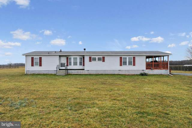 1344 Lynnbury Woods, DOVER, DE 19904 (MLS #DEKT246812) :: Kiliszek Real Estate Experts