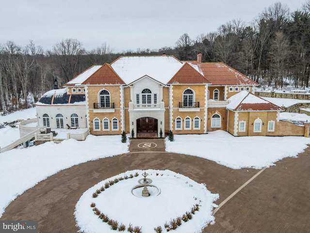 1284 Eagle Road, NEW HOPE, PA 18938 (#PABU521588) :: The Lux Living Group