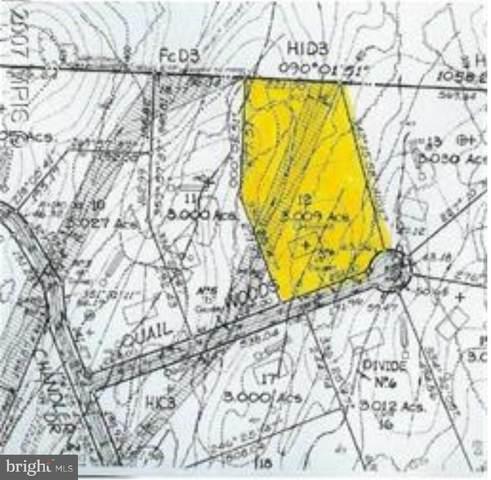 Quail Woods Drive, SHEPHERDSTOWN, WV 25443 (#WVJF141616) :: City Smart Living