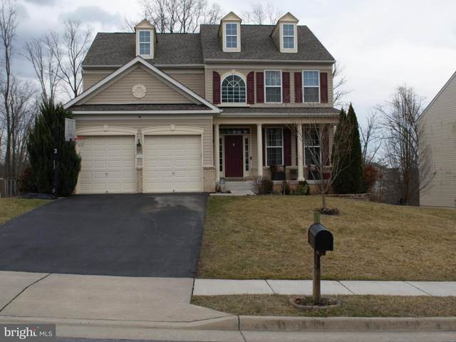 110 Auburn Hill Court, STEPHENS CITY, VA 22655 (#VAFV162470) :: The Redux Group