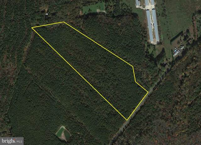0 Rum Ridge Road, DELMAR, MD 21875 (#MDWC111896) :: Jim Bass Group of Real Estate Teams, LLC