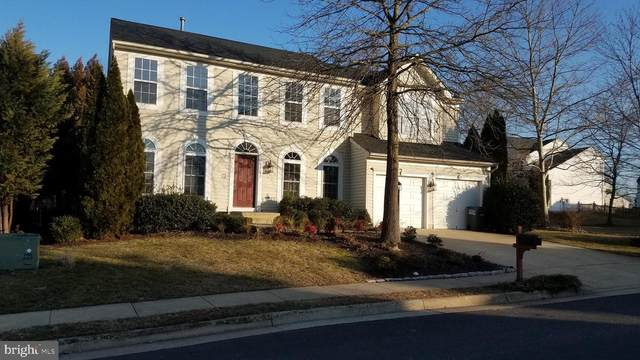 12151 Open Meadow Lane, BRISTOW, VA 20136 (#VAPW516178) :: The Schiff Home Team