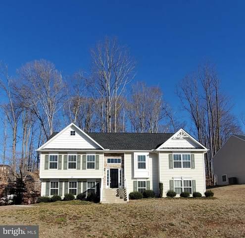 328 Phillips Street, FREDERICKSBURG, VA 22405 (#VAST229712) :: Colgan Real Estate