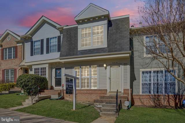 6519 Medinah Lane, ALEXANDRIA, VA 22312 (#VAFX1184384) :: Gail Nyman Group