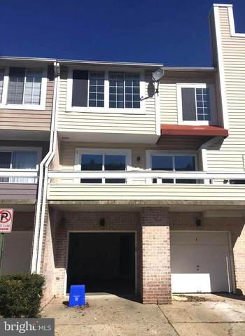 9865 Dockside Terrace, MONTGOMERY VILLAGE, MD 20886 (#MDMC746858) :: Bob Lucido Team of Keller Williams Integrity