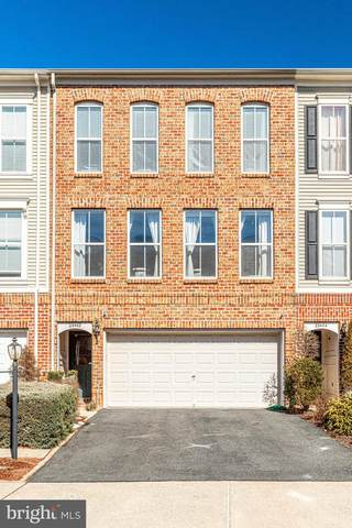 23442 Spice Bush Terrace, BRAMBLETON, VA 20148 (#VALO432226) :: SURE Sales Group