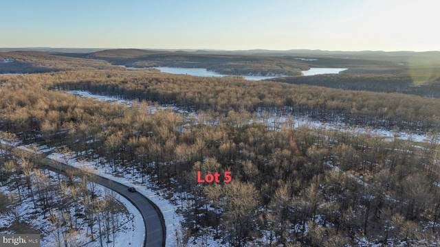 Lot 5 Fern Loop, MC HENRY, MD 21541 (#MDGA134594) :: AJ Team Realty